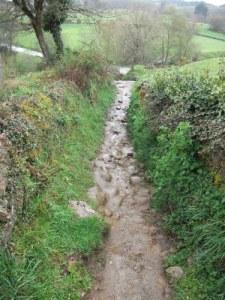 ligonde path
